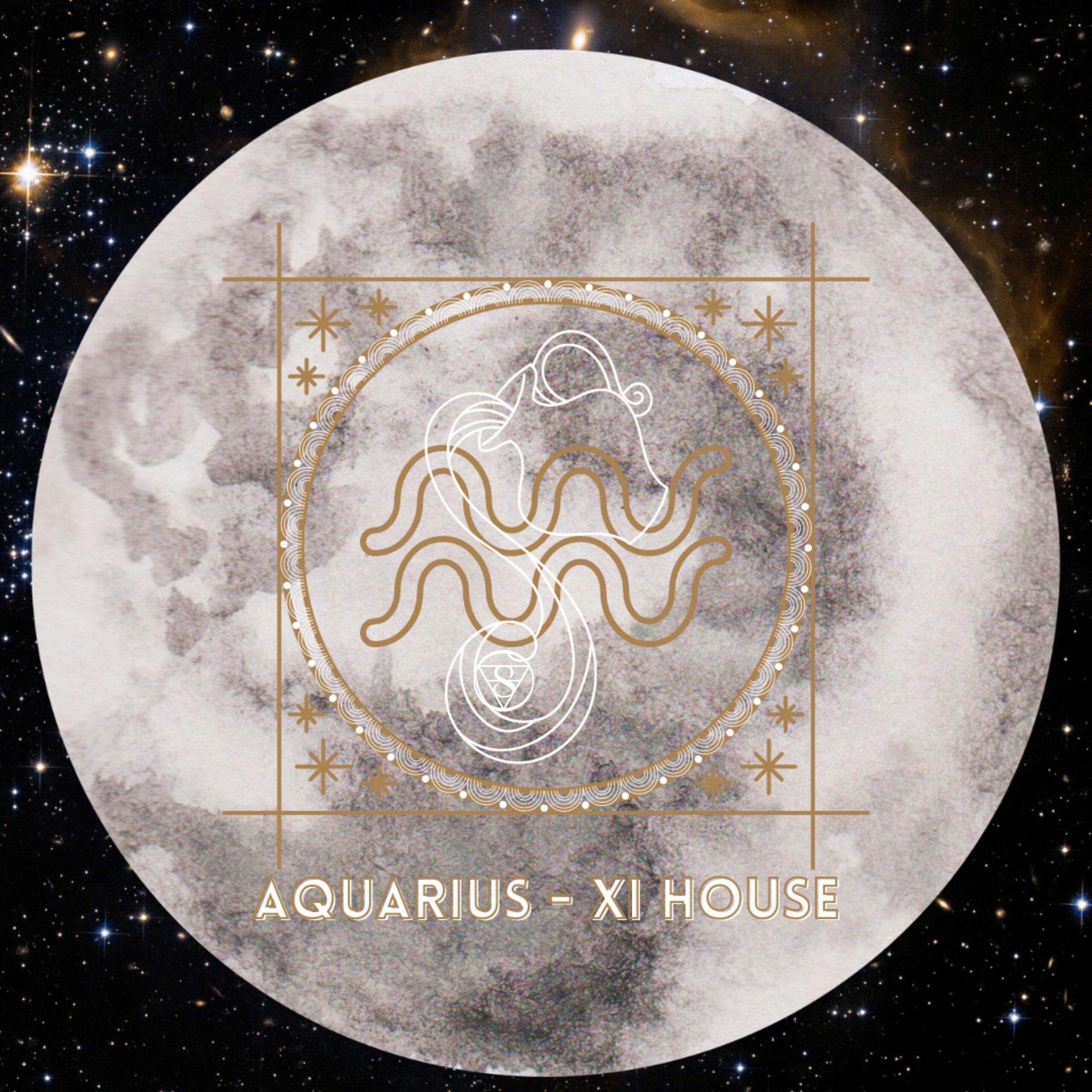 New Moon in Aquarius by Sangeeta Laura Biagi